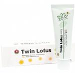 Дневная растительная зубная паста Twin Lotus Day Firm & Refreshing, 90 гр