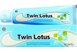 Растительная зубная паста «Twin Lotus Aqua Cool», 100 гр