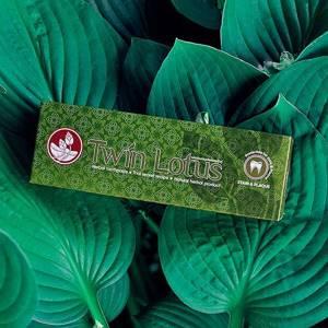 Зубная паста Twin Lotus «Рецепт от налета и пятен на зубах», 120 гр